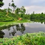 অপরূপ সুন্দর বাংলাদেশ